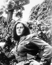 This is an image of Photograph & Poster of Elizabeth Montgomery 196547