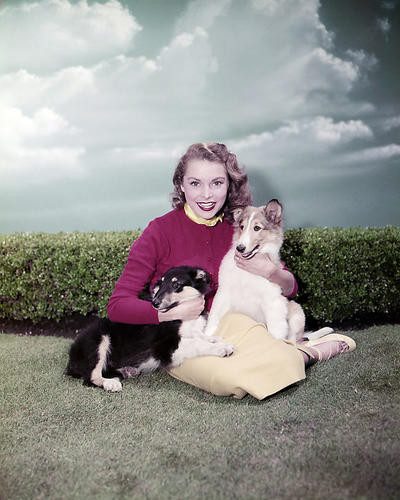 This is an image of Photograph & Poster of Janet Leigh 287285