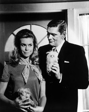 This is an image of Photograph & Poster of Bewitched 196638