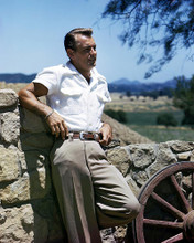This is an image of Photograph & Poster of Alan Ladd 287500
