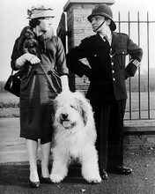 This is an image of Photograph & Poster of Carry on Constable 196680