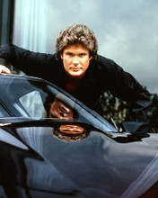 This is an image of Photograph & Poster of David Hasselhoff 287616