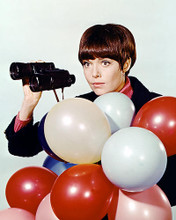 This is an image of Photograph & Poster of Barbara Feldon 287622