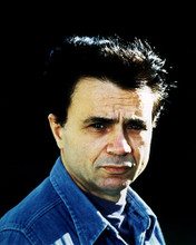 This is an image of Photograph & Poster of Robert Blake 287624