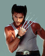 This is an image of Photograph & Poster of Hugh Jackman 287652