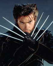 This is an image of Photograph & Poster of Hugh Jackman 287658