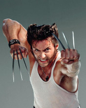 This is an image of Photograph & Poster of Hugh Jackman 287660