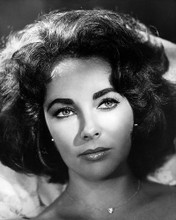 This is an image of Photograph & Poster of Elizabeth Taylor 196684