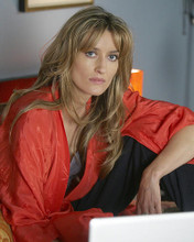 This is an image of Photograph & Poster of Natasha McElhone 287933