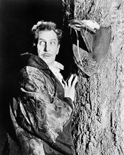 This is an image of Photograph & Poster of Vincent Price 196981
