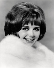 This is an image of Photograph & Poster of Deborah Walley 197366