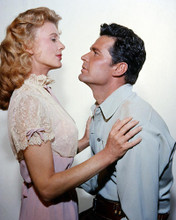 This is an image of Photograph & Poster of James Garner 288334