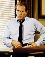 This is an image of Photograph & Poster of Darren McGavin 288363