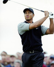 This is an image of Photograph & Poster of Tiger Woods 288396