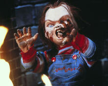 This is an image of Photograph & Poster of Child's Play 288244