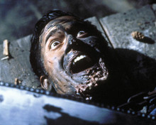This is an image of Photograph & Poster of Army of Darkness 288246