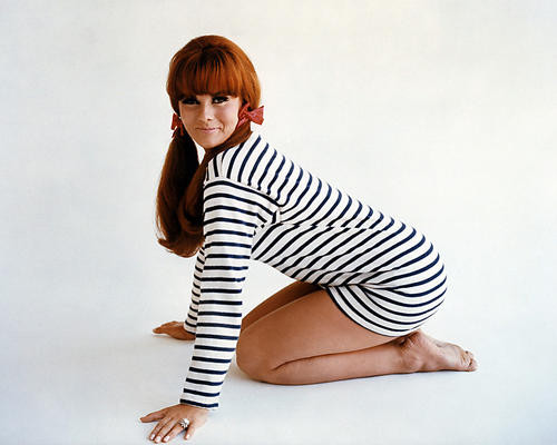 This is an image of Photograph & Poster of Ann-Margret 288399