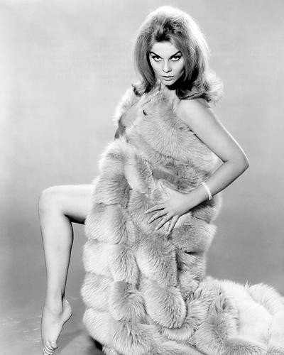 This is an image of Photograph & Poster of Ann-Margret 197228