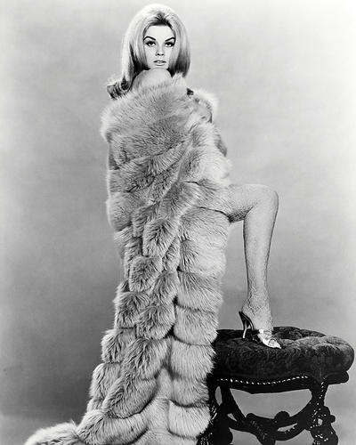 This is an image of Photograph & Poster of Ann-Margret 197237