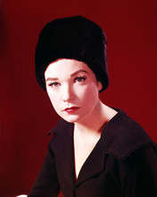 This is an image of Photograph & Poster of Shirley Maclaine 288556