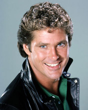 This is an image of Photograph & Poster of David Hasselhoff 288560