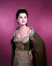 This is an image of Photograph & Poster of Debra Paget 288801