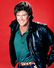 This is an image of Photograph & Poster of David Hasselhoff 288568