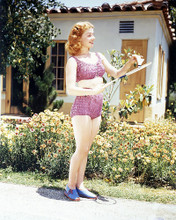 This is an image of Photograph & Poster of Ann Sheridan 289959