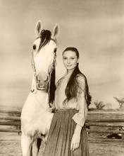 This is an image of Photograph & Poster of Audrey Hepburn 288872