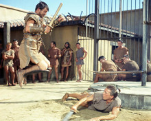 This is an image of Photograph & Poster of Spartacus 288894