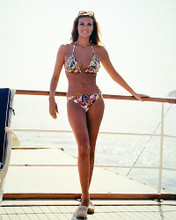 This is an image of Photograph & Poster of Raquel Welch 288731