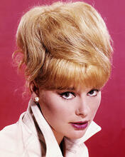 This is an image of Photograph & Poster of Elke Sommer 289136