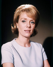 This is an image of Photograph & Poster of Inger Stevens 289119