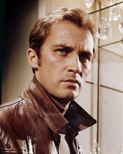 This is an image of Photograph & Poster of Roy Thinnes 289080