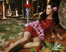 This is an image of Photograph & Poster of Nancy Kwan 289194