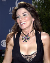 This is an image of Photograph & Poster of Shania Twain 289328
