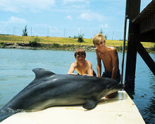 This is an image of Photograph & Poster of Flipper 289426