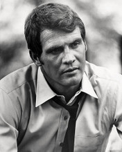 This is an image of Photograph & Poster of Lee Majors 197775
