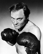 This is an image of Photograph & Poster of Stacey Keach 197827