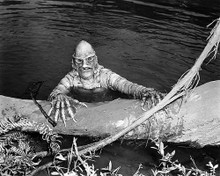 This is an image of Photograph & Poster of The Creature from the Black Lagoon 198018