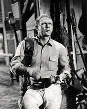 This is an image of Photograph & Poster of Steve McQueen 198029