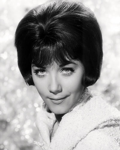 This is an image of Photograph & Poster of Linda Thorson 198119