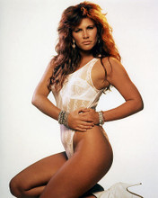This is an image of Photograph & Poster of Tawny Kitaen 289791