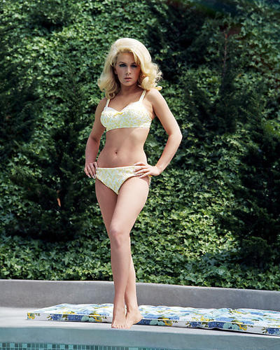 This is an image of Photograph & Poster of Stella Stevens 289637