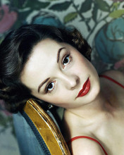 This is an image of Photograph & Poster of Jane Greer 289696