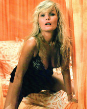 This is an image of Photograph & Poster of Valerie Perrine 289814