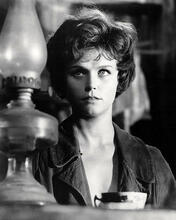 This is an image of Photograph & Poster of Lee Remick 198639