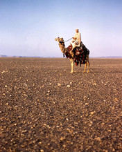 This is an image of Photograph & Poster of Lawrence of Arabia 289823