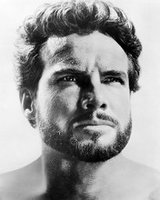 This is an image of Photograph & Poster of Steve Reeves 198341