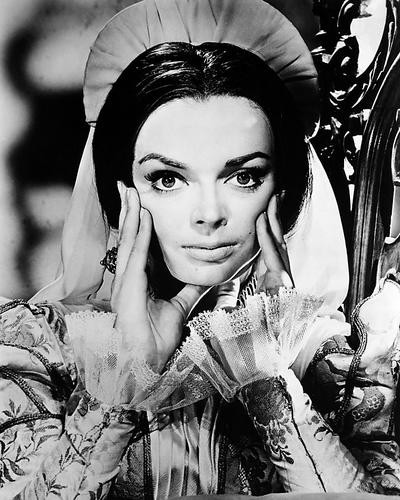 This is an image of Photograph & Poster of Barbara Steele 198582